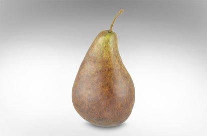 Picture of Pear Brown