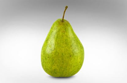 Picture of Pear Green