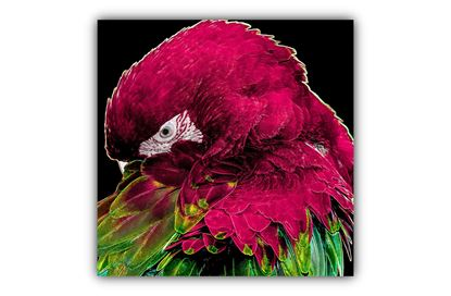 Picture of Neon Bird Pink