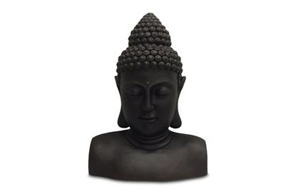 Picture of Island Buddha