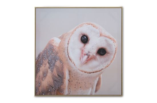 Picture of Owl Canvas
