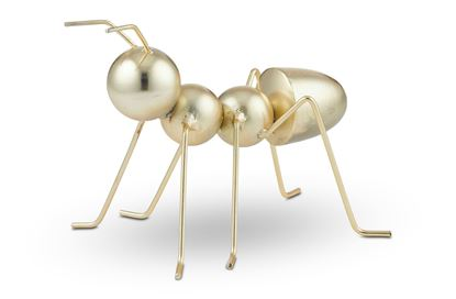 Picture of The Ant