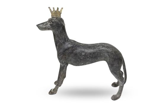 Picture of Bobby Crown Dog