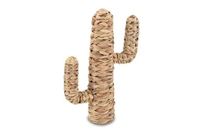 Picture of Natural Cactus Small