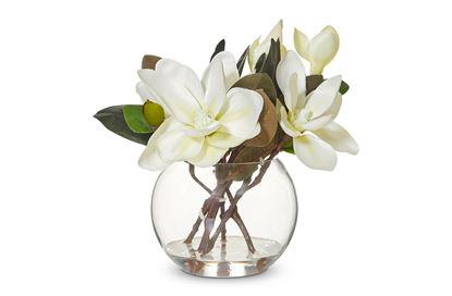 Picture of Magnolia In Vase