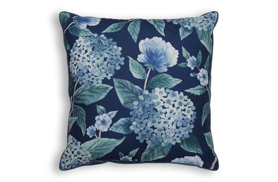 Picture of Hydrangea Dark Blue