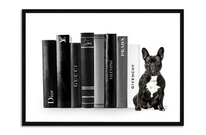 Picture of Fashion French Bulldog