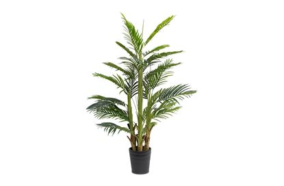 """Picture of Areca Palm """"real touch"""" 160cm"""
