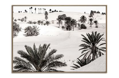 Picture of Desert Dream One 100 x 140 N/F/C