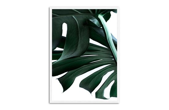 Picture of Green Palm One 130 x 95 W/F