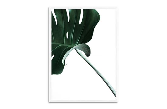Picture of Green Palm Three 75 x 55 W/F