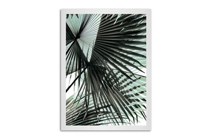 Picture of Tropic Palm 130 x 95 W/F