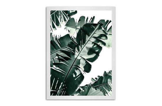 Picture of Tropic Leaf 130 x 95 W/F