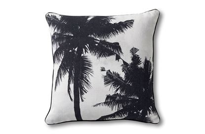 Picture of Bahama Palm Trees Square