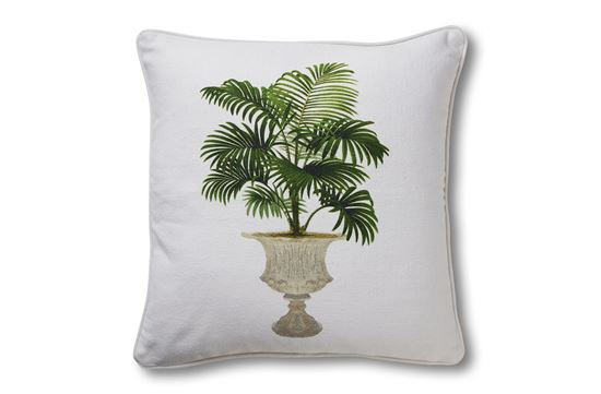 Picture of Palm Grandeur