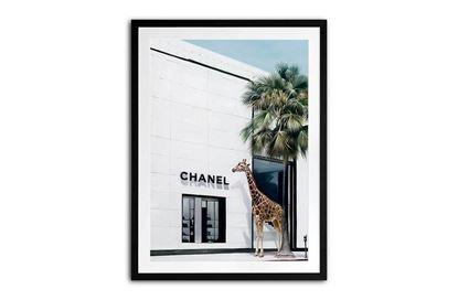 Picture of Chanel Jungle 105 x 85 B/F