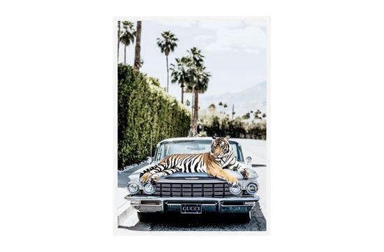 Picture of Gucci Tiger 75 x 55 W/F